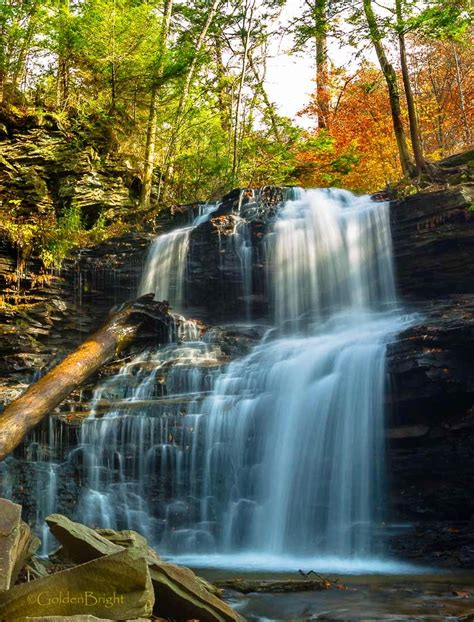 See What I See: Ricketts Glen State Park, PA