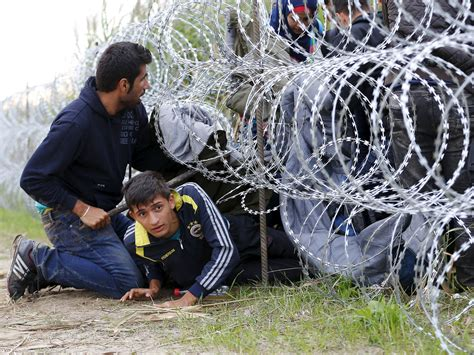 Hungary planning 'massive' new border fence to keep out