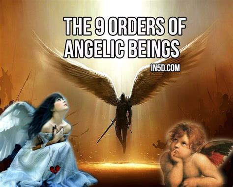 The 9 Orders Of Angelic Beings : In5D