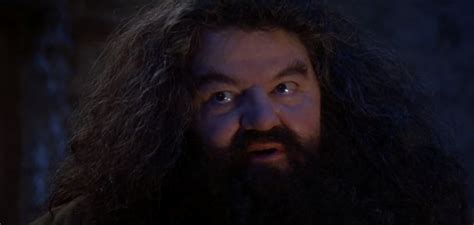 Hagrid Was Too Small in the Movies, Director Says - GameSpot
