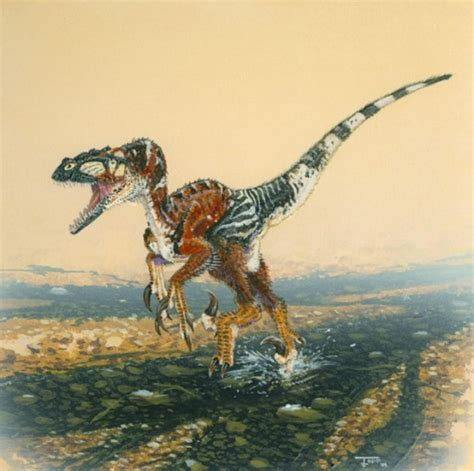 Facts About Utahraptor